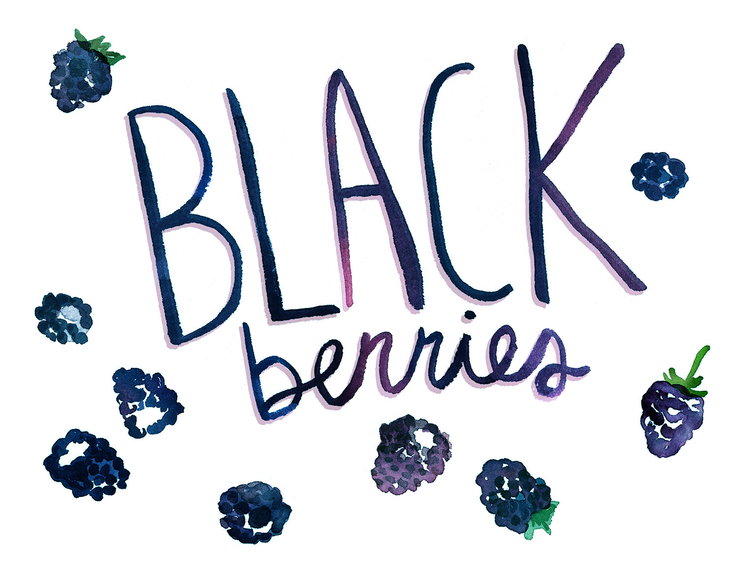 Blackberries_watercolor-illustration_food-network